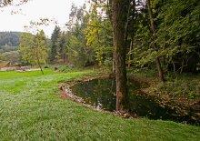 Landidylle mit Wald & Teich