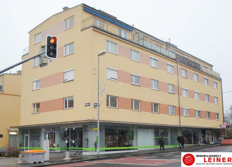 264,11 m² Geschäftslokal in sehr frequentierter Lage in Schwechat zu mieten Objekt_8668 Bild_207