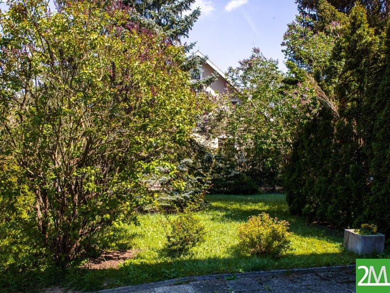 Geräumiges Einfamilienhaus nahe Stift Heiligenkreuz /  / 2532Heiligenkreuz im Wienerwald / Bild 3