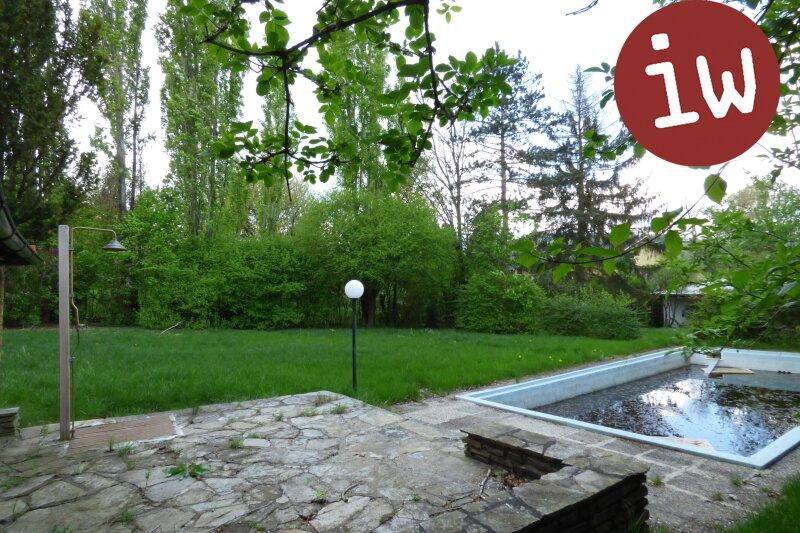Neubau Familiendomizil im begehrten Sachsenviertel herrlicher Garten Objekt_535 Bild_91