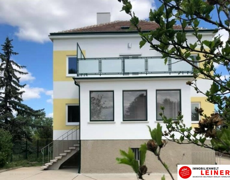 Schwechat: Saniertes Haus mit 2 getrennten Wohneinheiten zu mieten - auch für Praxis geeignet Objekt_10791 Bild_287