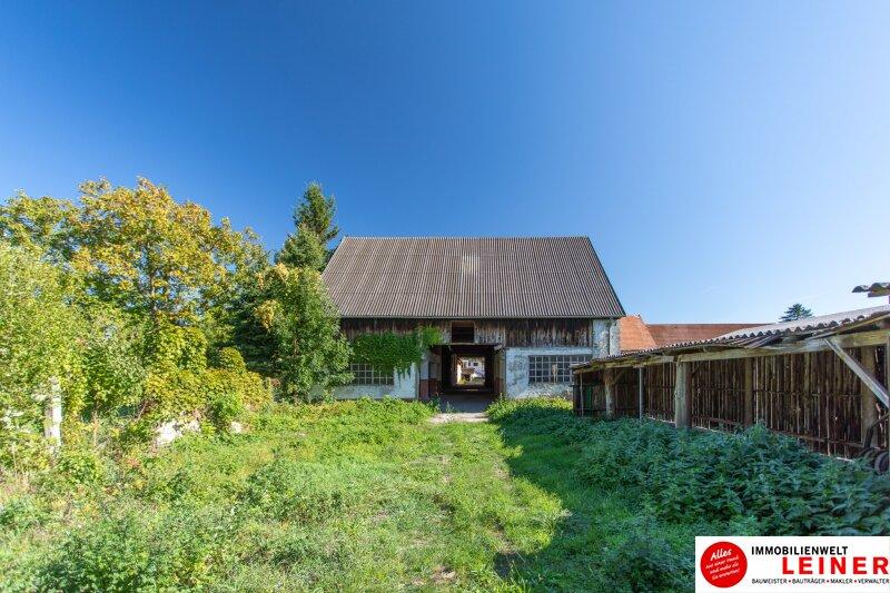 Margarethen am Moos - Haus im Rohbau mit viel Potential Objekt_9964 Bild_221