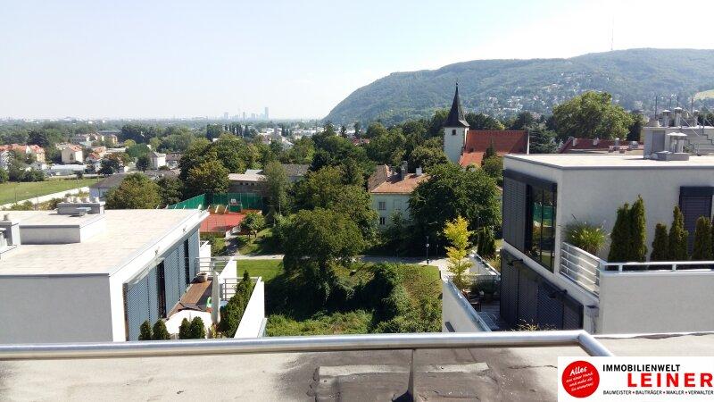 Exklusives Wohnen - Penthouse mit Blick über die Weinberge - in Klosterneuburg an der Stadtgrenze zu Wien - Erstbezug Objekt_9332