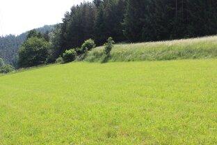 Grundstück am Waldrand mit Fernblick auf die Rax!