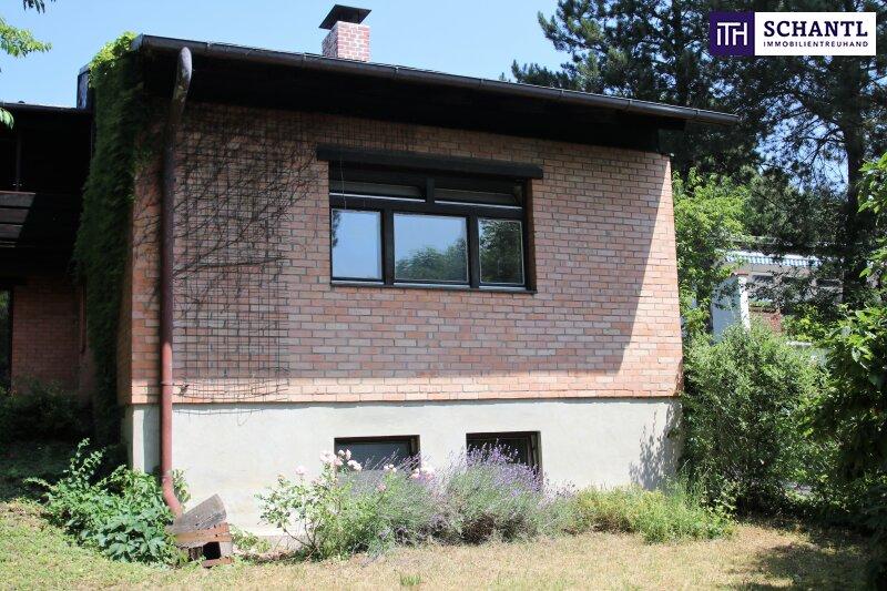 Naturidylle ! Absolute Toplage ! Südseitiges Traumgrundstück mit ausbaubarem Haus in Hinterbrühl ! /  / 2371Hinterbrühl / Bild 14