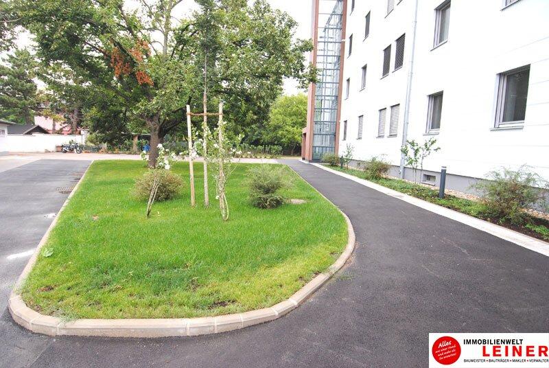 Schwechat - Rannersdorf:  ruhige 2 Zimmer - 50 m² Mietwohnung mit bester Verkehrsanbindung! Objekt_9823 Bild_602