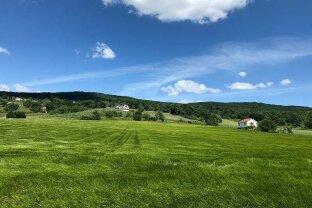 Rechnitz: Sonniges Grundstück inmitten der Weinberge