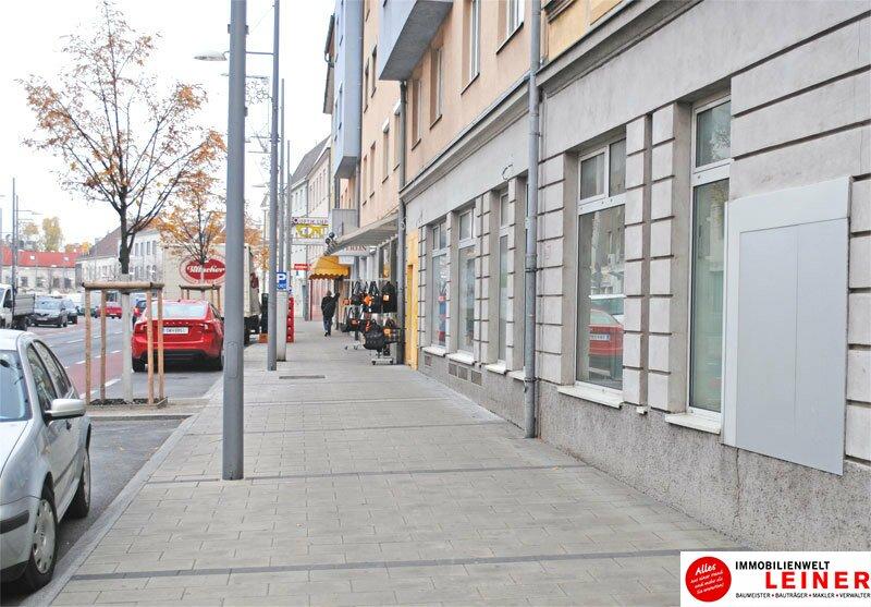 Geschäftslokal im Zentrum von Schwechat - auch für Pop Up Store geeignet Objekt_8843 Bild_349