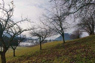 Idyllisch, in absoluter Ruhelage gelegenes landwirtschaftliches Anwesen im Bezirk Schwaz