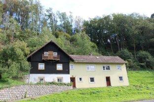 Haus in Plesching