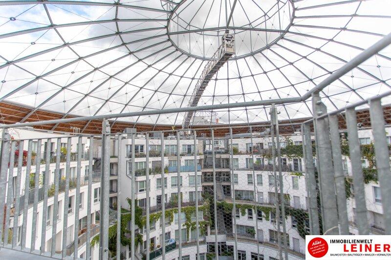 Wunderschöne Dachterrassenwohnung im Gasometer Objekt_10083 Bild_895