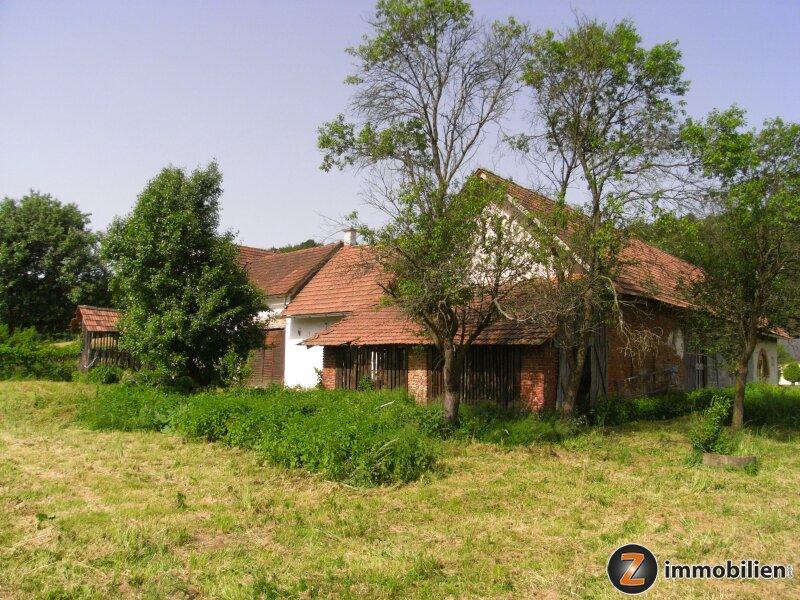 Nähe Jennersdorf: Großer Vierkanthof mit viel Grund in Ruhelage
