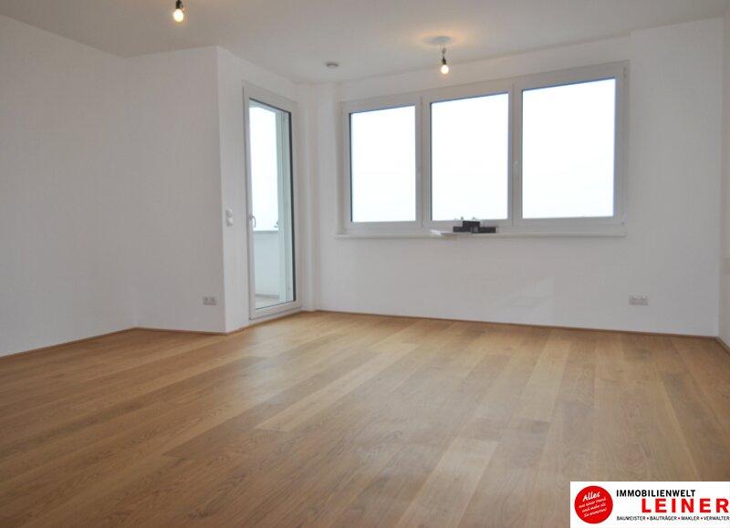 Schwechat - 57 m² Mietwohnung mit Terrasse im Zentrum - Erstbezug Objekt_9290 Bild_483