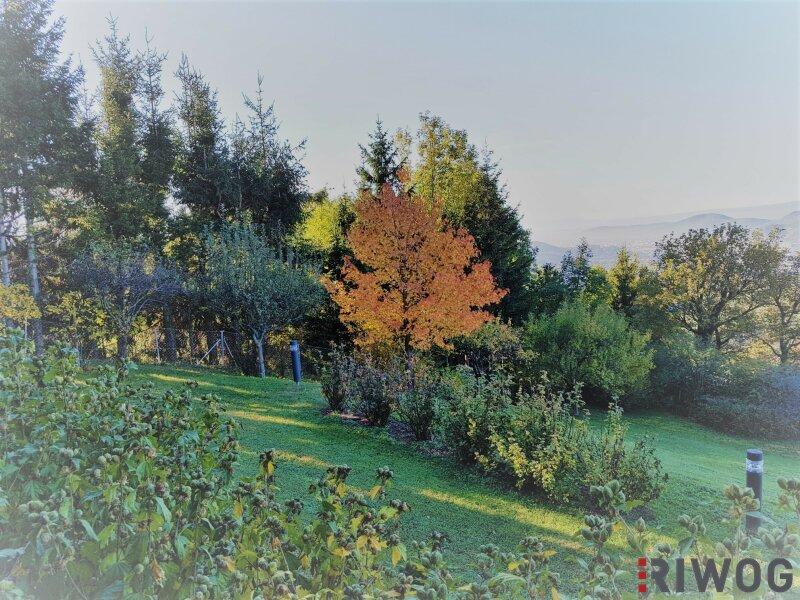 Diese Lage ist einzigartig - Villa in 8045 Graz /  / 8045Graz / Bild 9