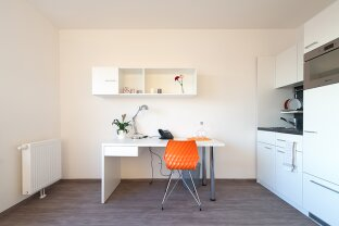 PROVISIONSFREI! Vollmöbliertes Design Apartment, ALL-IN-MIETE! (1)