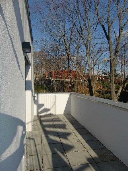 Dachterrasse. Faszinierend das dritte Zimmer im Freien /  / 1230Wien / Bild 7