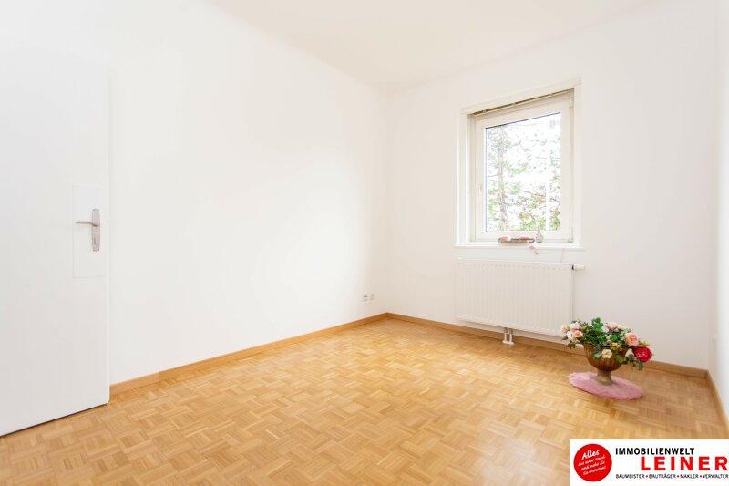 Schwechat: Saniertes Haus mit 2 getrennten Wohneinheiten zu mieten - auch für Praxis geeignet Objekt_10791 Bild_293