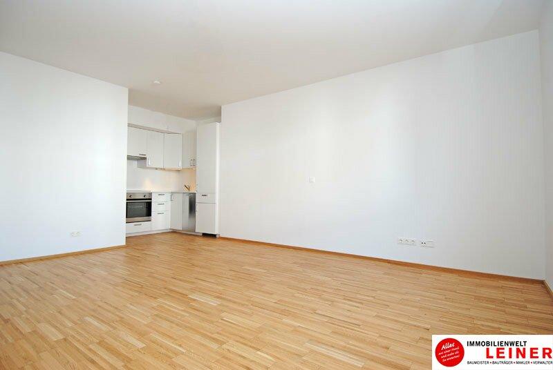 Himberg - 2 Zimmer Mietwohnung im Zentrum von Himberg - herrlich ruhig Objekt_9785