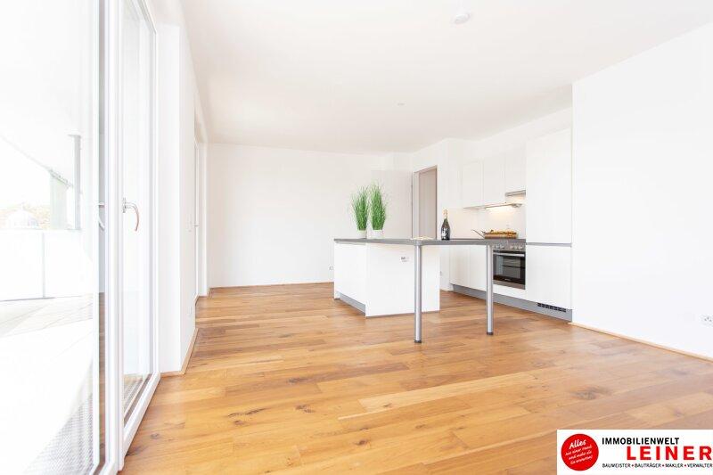 *UNBEFRISTET*Schwechat - 2 Zimmer Mietwohnung im Erstbezug mit großer Terrasse und Loggia Objekt_9218