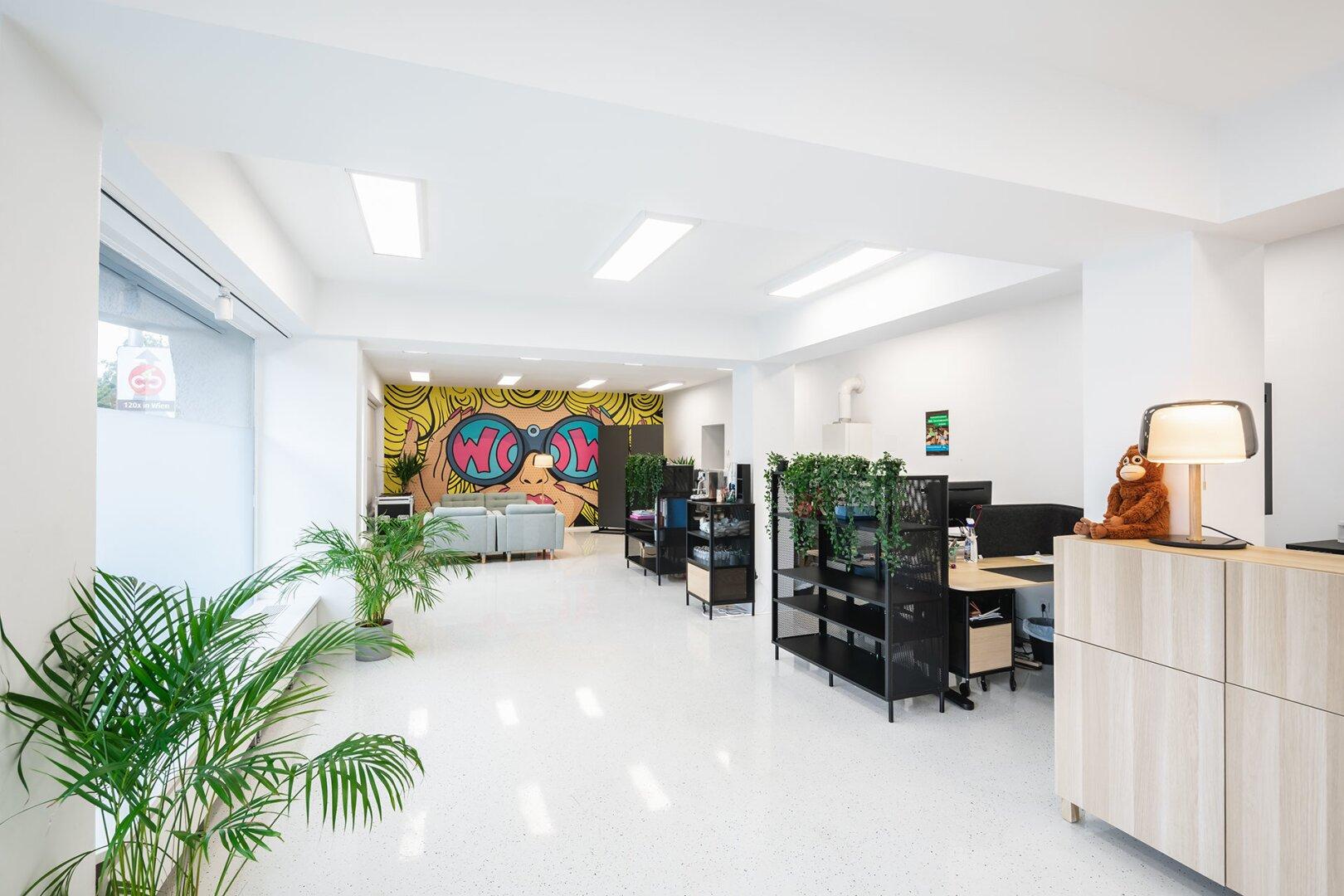 Bürofläche/Schauraum