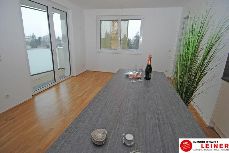 Schwechat - 2 Zimmer Mietwohnung im Erstbezug Objekt_3764 Bild_33