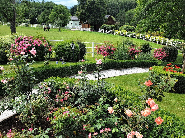 phantastische Gartengestaltung