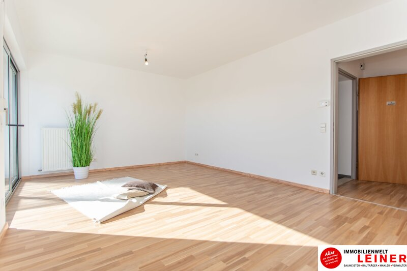 Ebergassing - 3 Zimmerwohnung im Zentrum Objekt_10432 Bild_498
