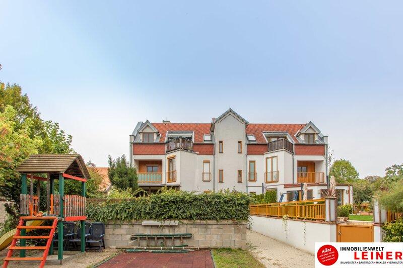 ACHTUNG! KAUFANBOT LIEGT VOR! Schwadorf bei Wien - 2 Zimmer Terrassenwohnung - hier will ich wohnen! Objekt_9965 Bild_230