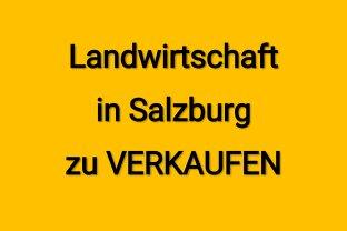 Landwirtschaft in Salzburg zu VERKAUFEN!