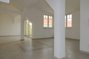 VERMIETET - Großzügige DG-Wohnung mit Terrasse zur Alten Donau