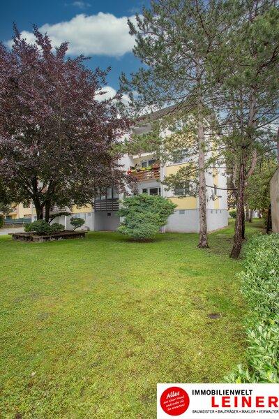 Hier wird Ihr Wohntraum Wirklichkeit! 3 Zimmer Eigentumswohnung in Enzersdorf an der Fischa - nur 20 Minuten von Wien ab monatlich NUR 490,- Objekt_10979 Bild_471