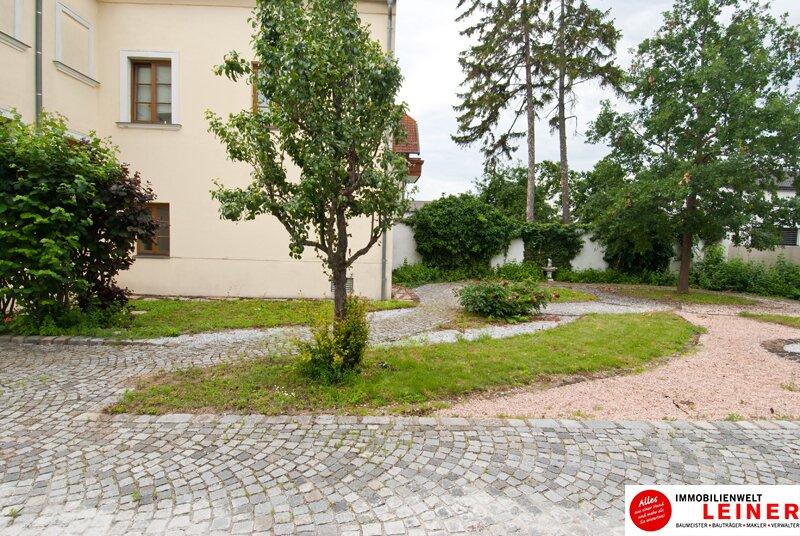 2320 Schwechat - Rauchenwarth: 3 Zimmer Mietwohnung - herrschaftlich wohnen in einem Denkmalgeschütztem Haus mit Garten Objekt_10917 Bild_389