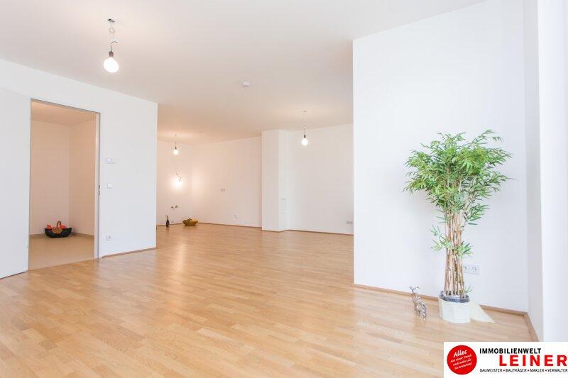 *UNBEFRISTET* Schwechat - 3 Zimmer Mietwohnung mit 104 m² großem Garten und Terrasse Objekt_9872 Bild_593