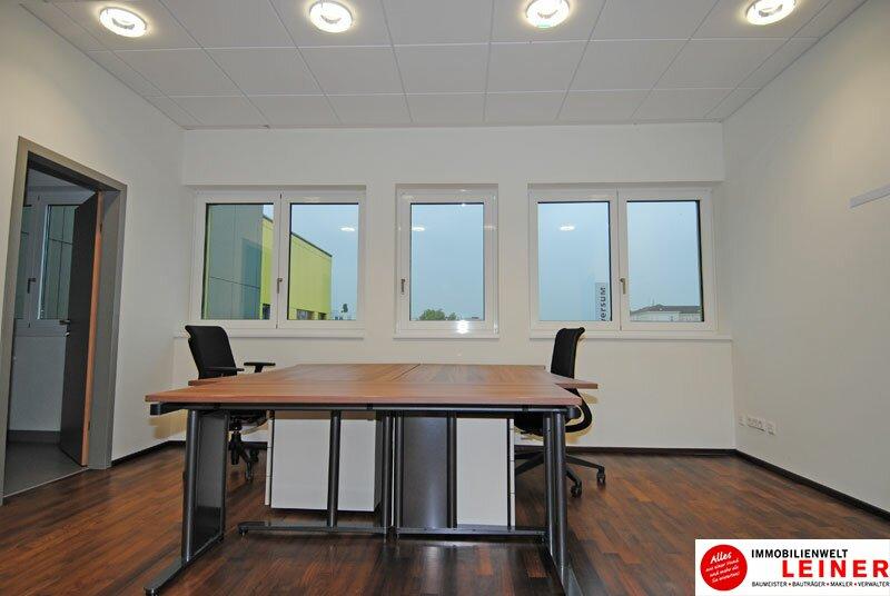 Schwechat - modernes Büro in Zentrumslage Objekt_10421 Bild_459