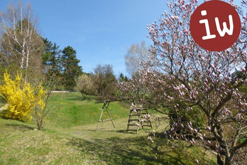 Familienhaus auf großartigem Grundstück am unteren Ölberg, Wienblick Objekt_376 Bild_103