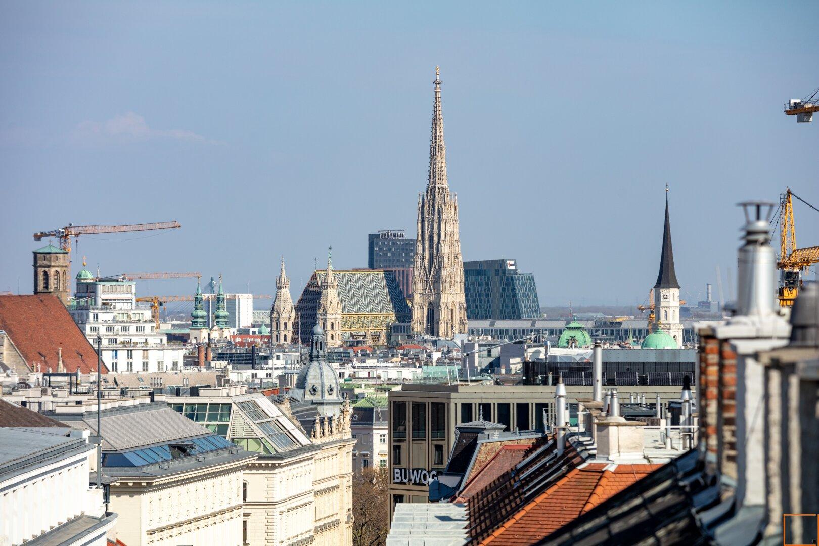 Terrasse mit Stephansdomblick