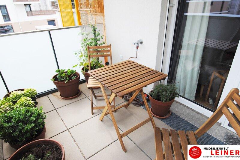Großzügige Einzimmerwohnung mit Tiefgaragenplatz in Schwechat Objekt_9577