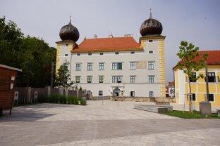 TOP Adresse - Büroräume, Atelier etc in Kottingbrunn zu vermieten