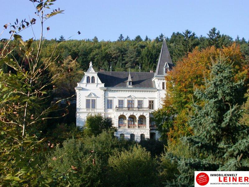 Einzigartige Gelegenheit! Waldklinik Bad Sauerbrunn zu verkaufen!! Objekt_8516