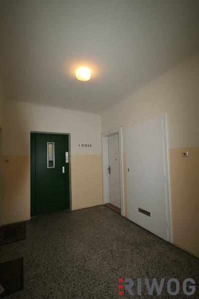 Komplett sanierte Neubauwohnung mit Blick in den begrünten Innenhof - WG-geeignet /  / 1050Wien / Bild 3