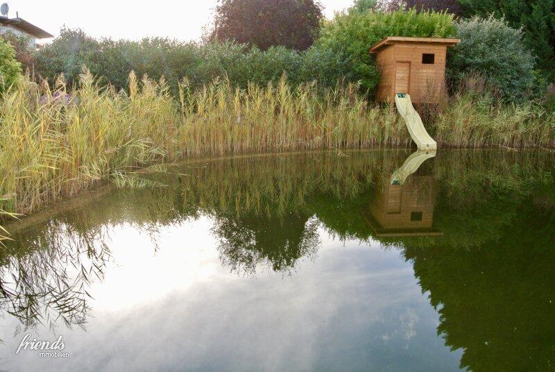 Villa mit Schwimmbiotop in Guntramsdorf /  / 2353Guntramsdorf / Bild 11