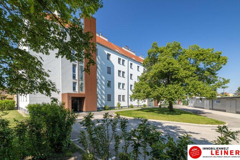 Schwechat - Rannersdorf:  ruhige 2 Zimmer Mietwohnung mit Loggia sofort beziehbar! Objekt_16096