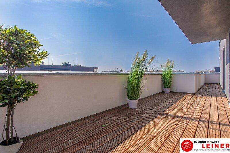 traumhafte Terrasse!! 4 Zimmer in Schwechat  - unbefristeter Mietvertrag! Objekt_9780