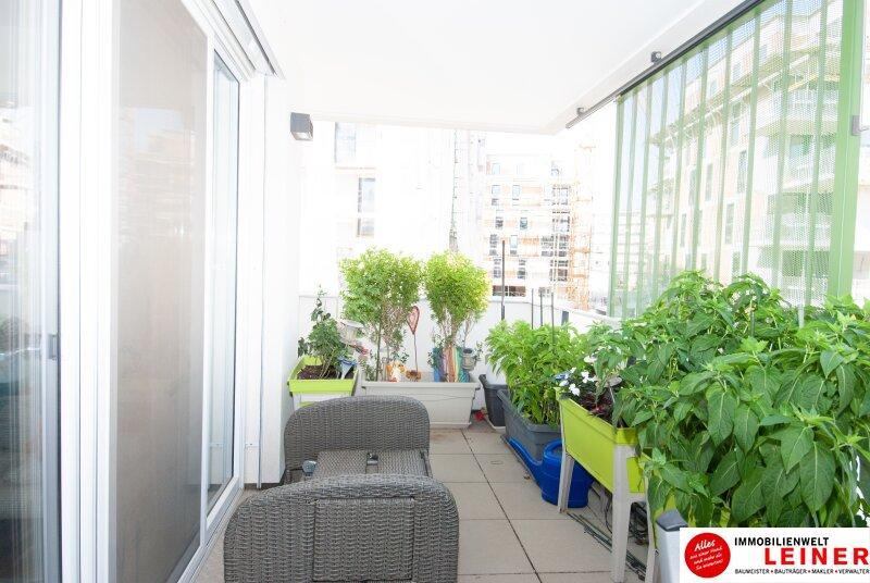 Traumhafte lichtdurchflutete Wohnung mit Balkon im Herzen von Schwechat Objekt_8930 Bild_231