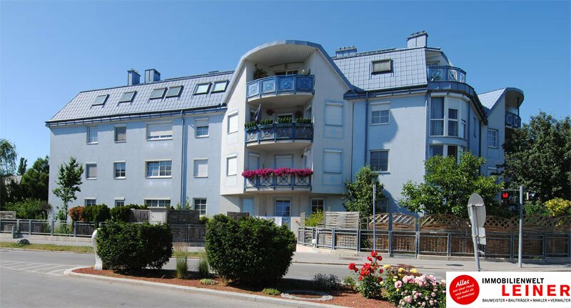 Schwechat: Top gepflegte 3 Zimmer Eigentumswohnung mit sonniger, ruhiger Loggia! Objekt_8939 Bild_888