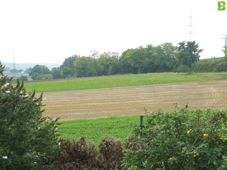 Garten mit Fernblich - Dürnkrut Bezirk Gänserndorf
