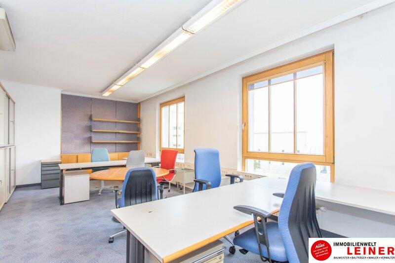 Endlich Schluss mit Home Office! Helles und zentral gelegenes  32,30 m² großes Büro in Schwechat Objekt_10893