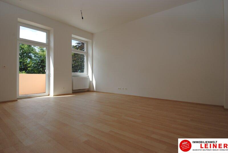 Schwechat - Mietwohnung 2 Zimmer mit großem Balkon  -  stilvoll wohnen in der geschichtsträchtigen Villa Mautner Markhof! /  / 2320Schwechat / Bild 1