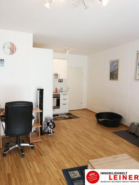 57m² Wohnung mit sehr schönem Garten und Terrasse Objekt_8991