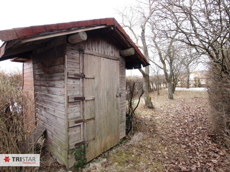 Idyllisches Naturparadies zu einem Spitzenpreis - 1232m² Bauland in traumhafter Grünruhelage! /  / 2551Enzesfeld-Lindabrunn / Bild 6